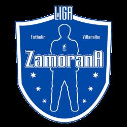 Liga Zamora500